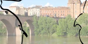 Agence Alcimo Montauban
